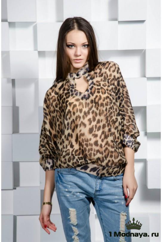 Леопардовые Блузки Купить В Воронеже